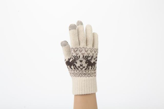 Winter Fashion Jacquard Pattern TouchScreen Gloves